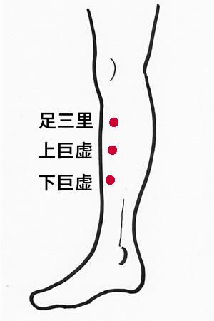 katai-ikei-tb.jpg